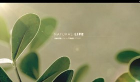 natural-life-feature-image